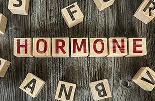 Heilpraktikerin Nicole Becker-Schmidt | Trier | Natürliche Hormontherapie | Wechseljahrbeschwerden | unerfüllter Kinderwunsch